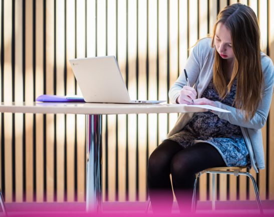 Undergraduate studying in the Digital Humanities Centre, University Park