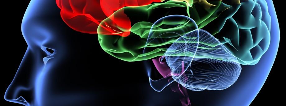 Schizophrenia symptoms linked to faulty switch in the brain