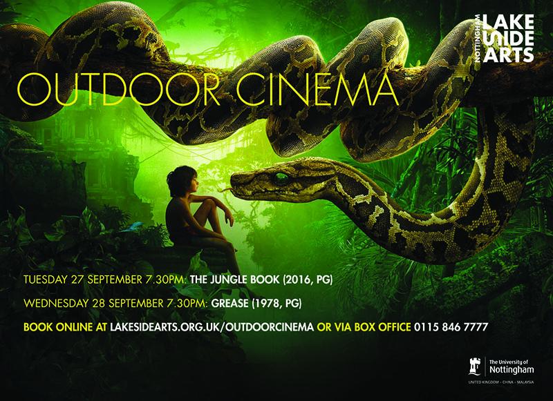Outdoor cinema 800x600