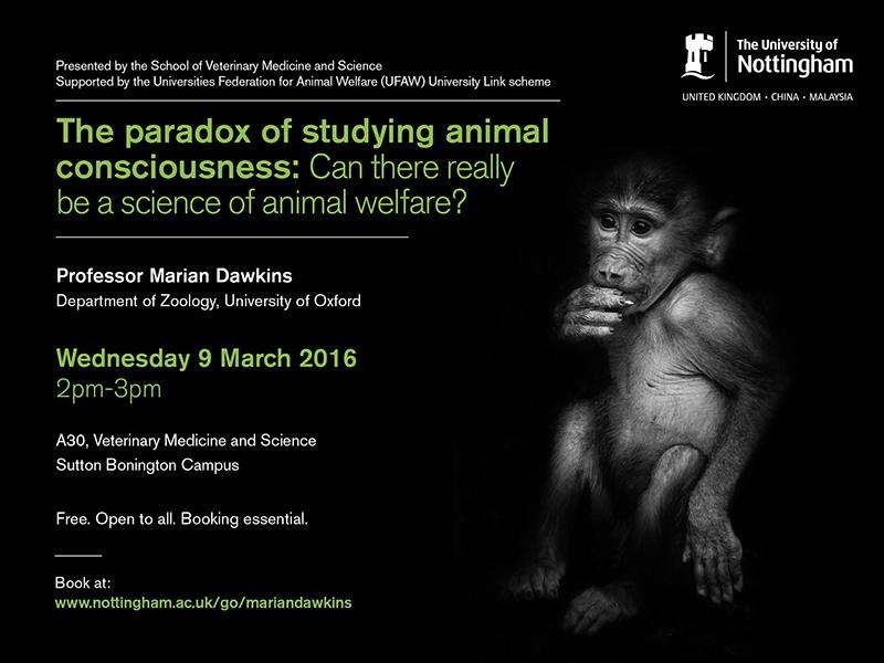 Paradox of animal welfare 800x600