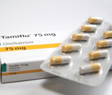 Tamiflu antiviral drugs